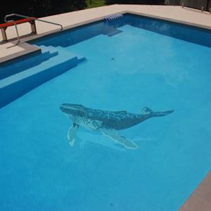 Photos of Tiled Mosaic Pictures Pool Mosaic Murals